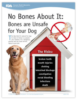 FDA poster with dog and no bones info